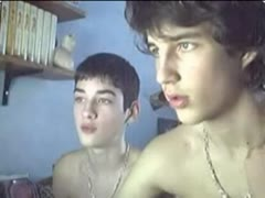 Brothers on webcam